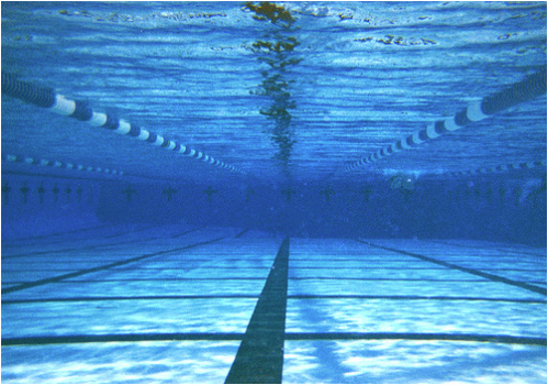 Underwater shot of swimming pool